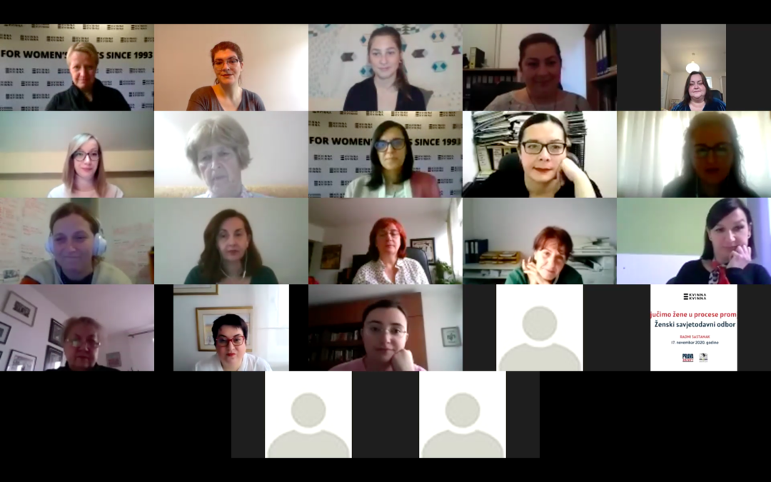 Online meeting: Women's Advisory Board – Include Women in Change Processes